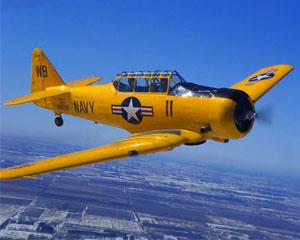 t6-texan-aerobatic-flight-30-minute-chicago_large.jpg