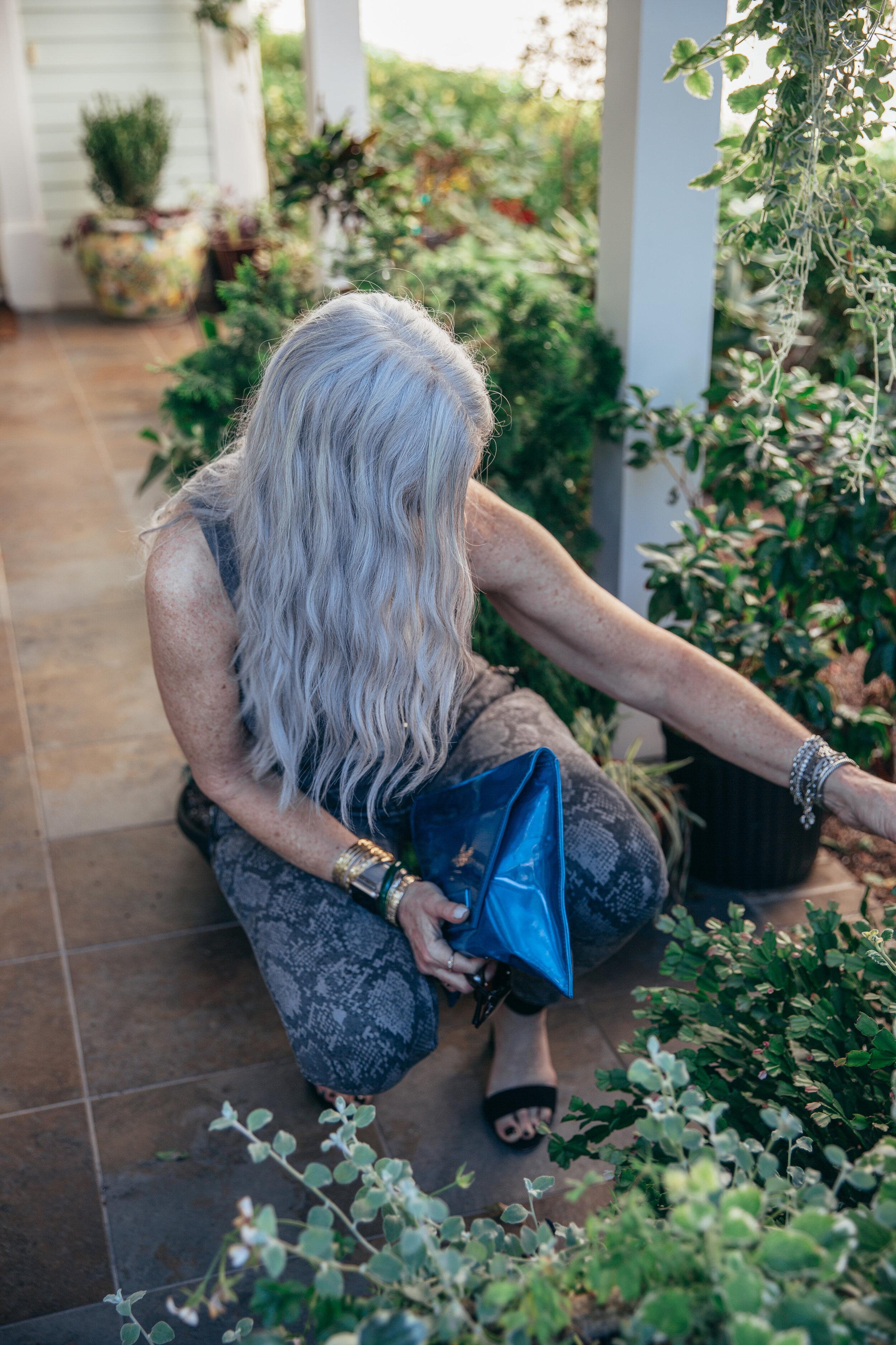 Lisa snake pants 2019-35.jpg