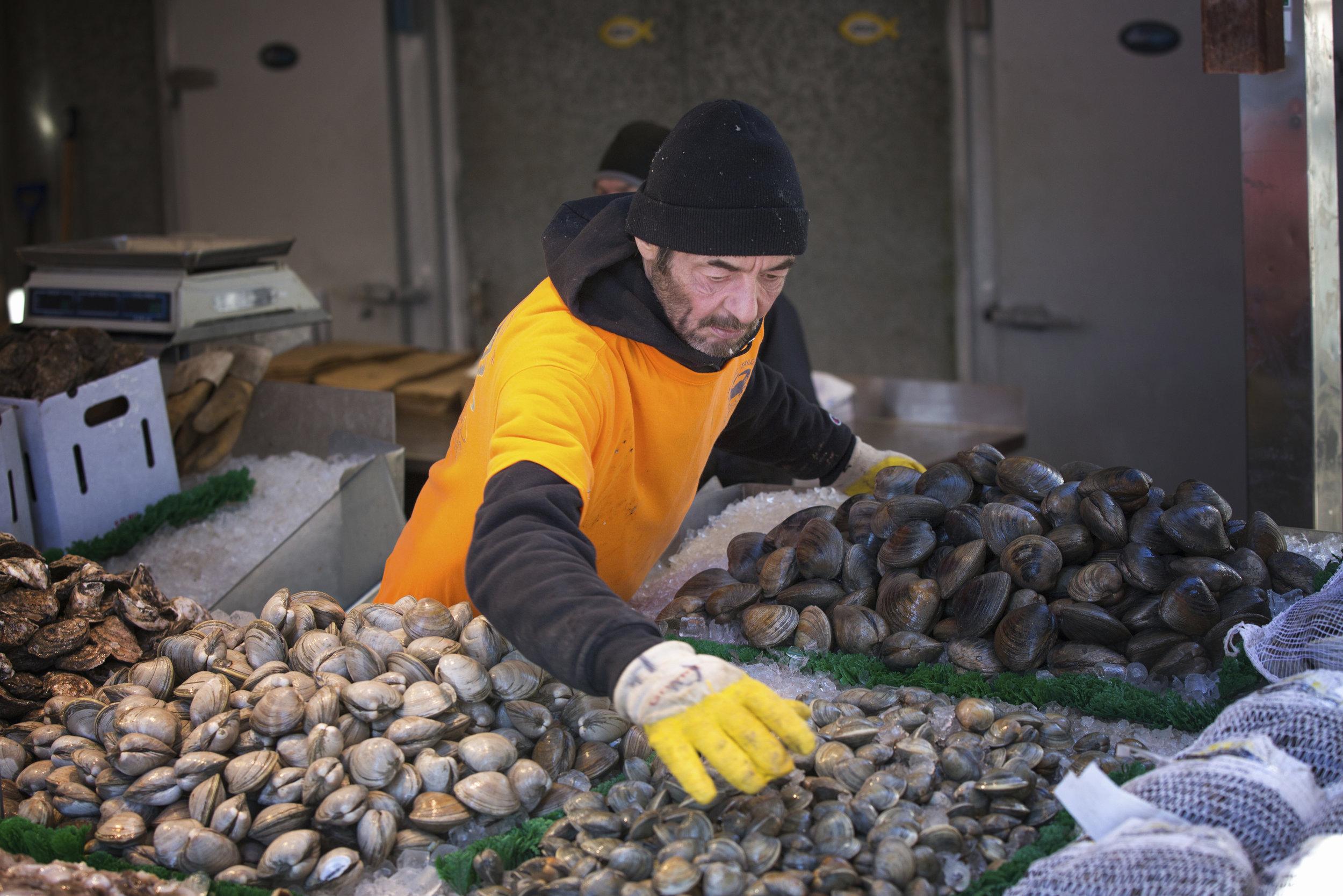 Providing Live Feeds for Shellfish