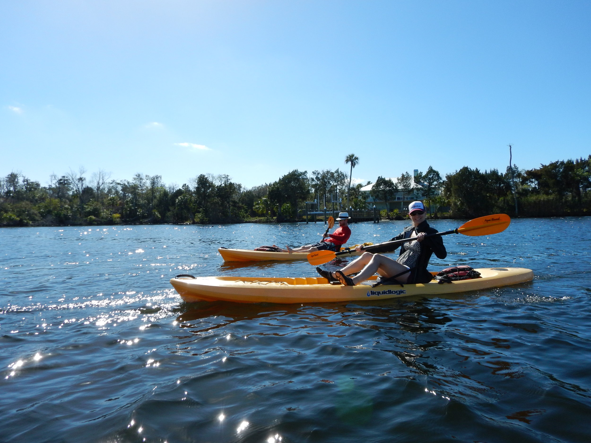 We'll explore the Homossassa River and saddle up just outside of the State Park protected manatee area.  We'll probably even see some visitors.  This paddle is about an hour north of Tampa in the heart of the Homossassa community.  Due to high boating traffic, this tour only offered in Late fall and winter months.