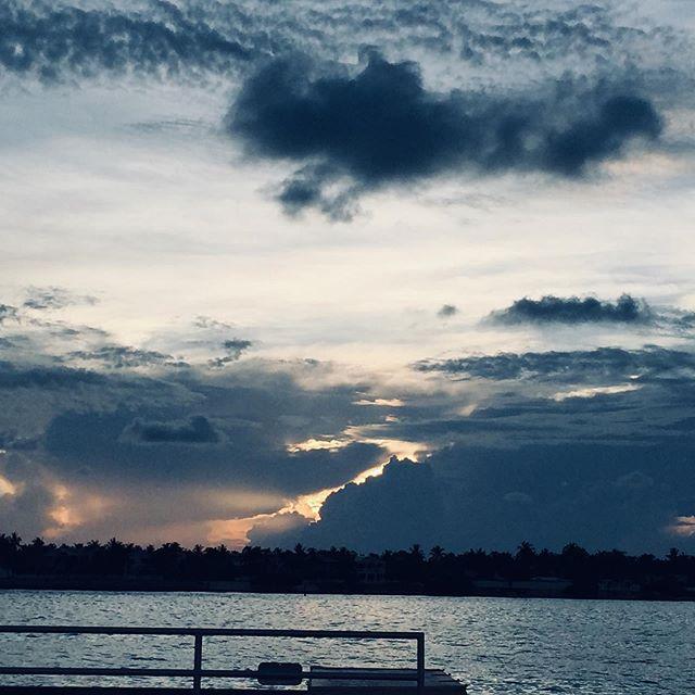 #sunset #mallorysquare #vaca