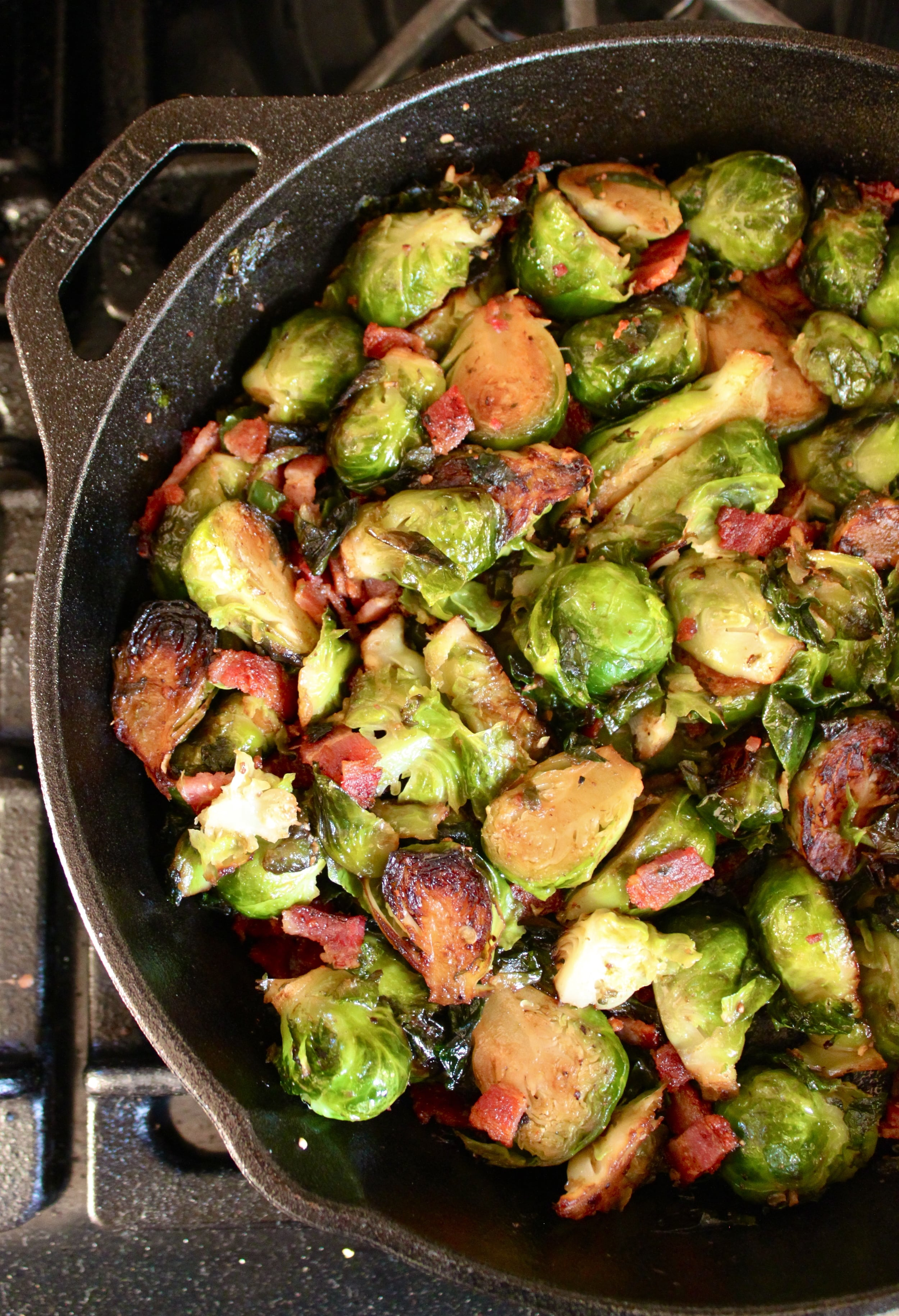 turkey & gouda grilled cheese with bacon brussels_12.jpg