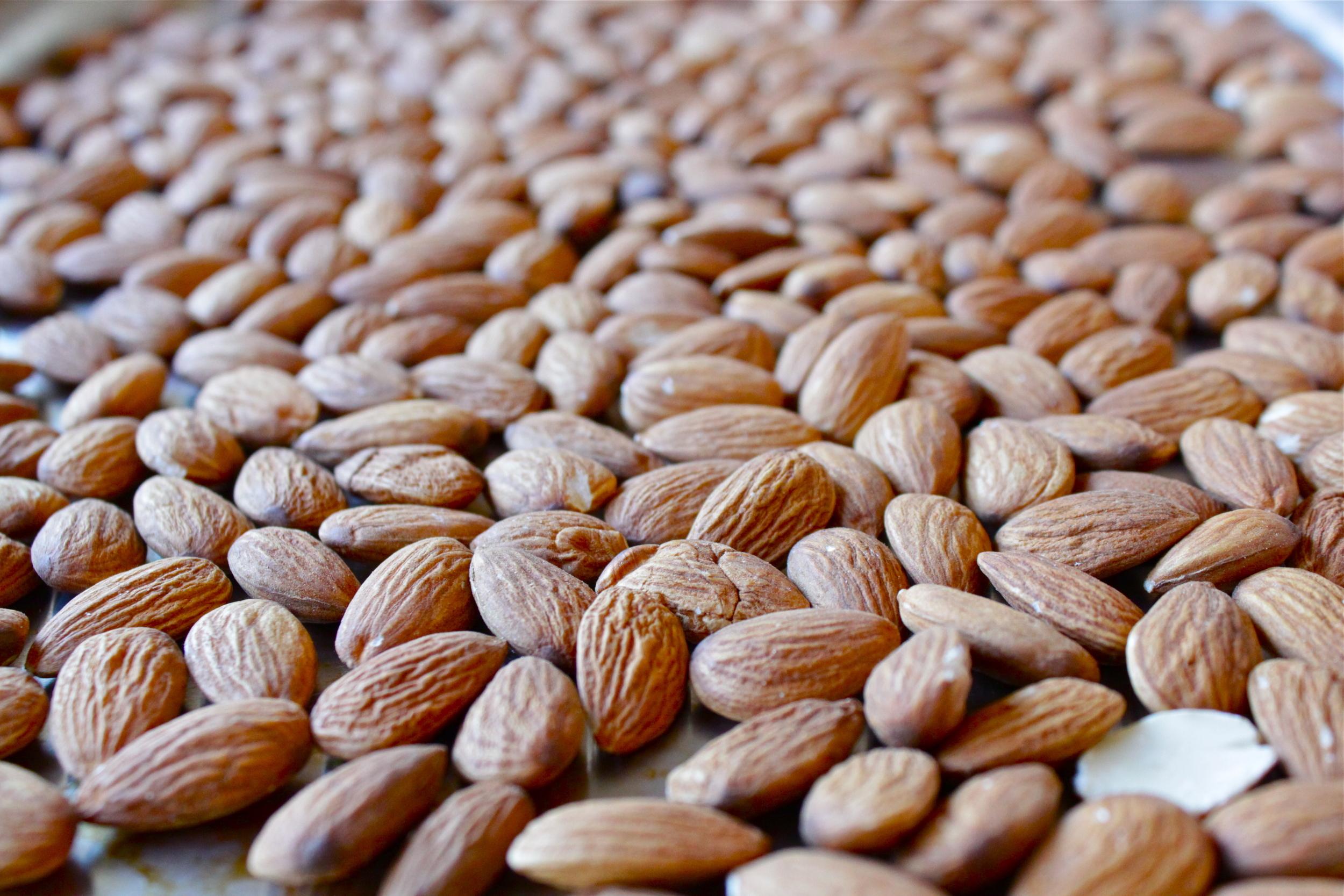 almond butter_5.JPG