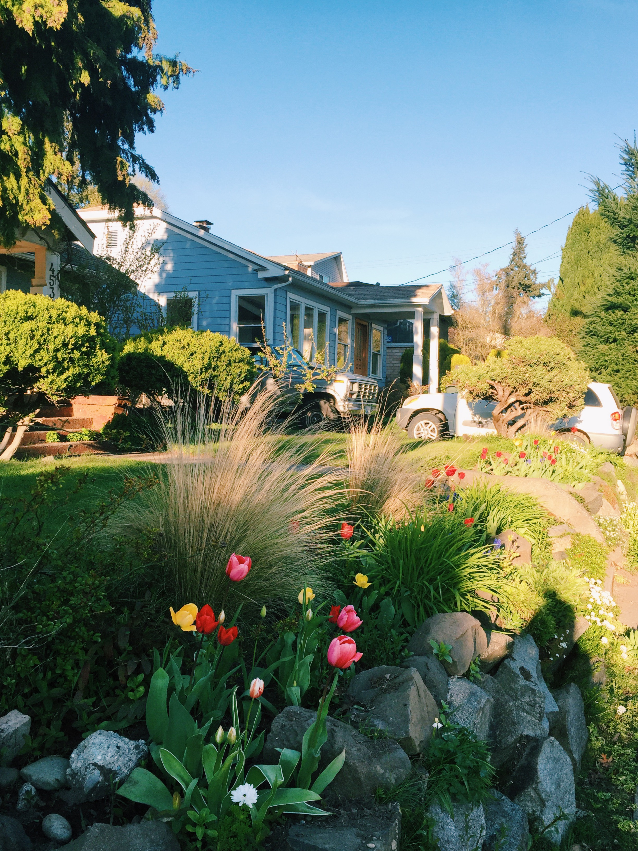 seattle spring-quinns place_30.JPG