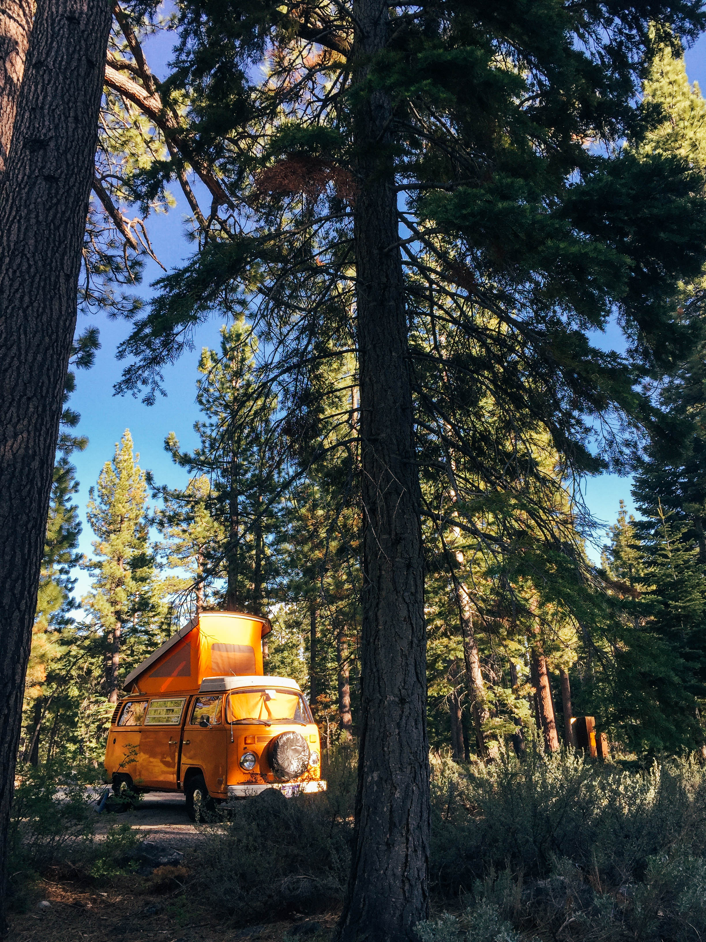 tahoe vw road trip-quinnsplace_16.jpg