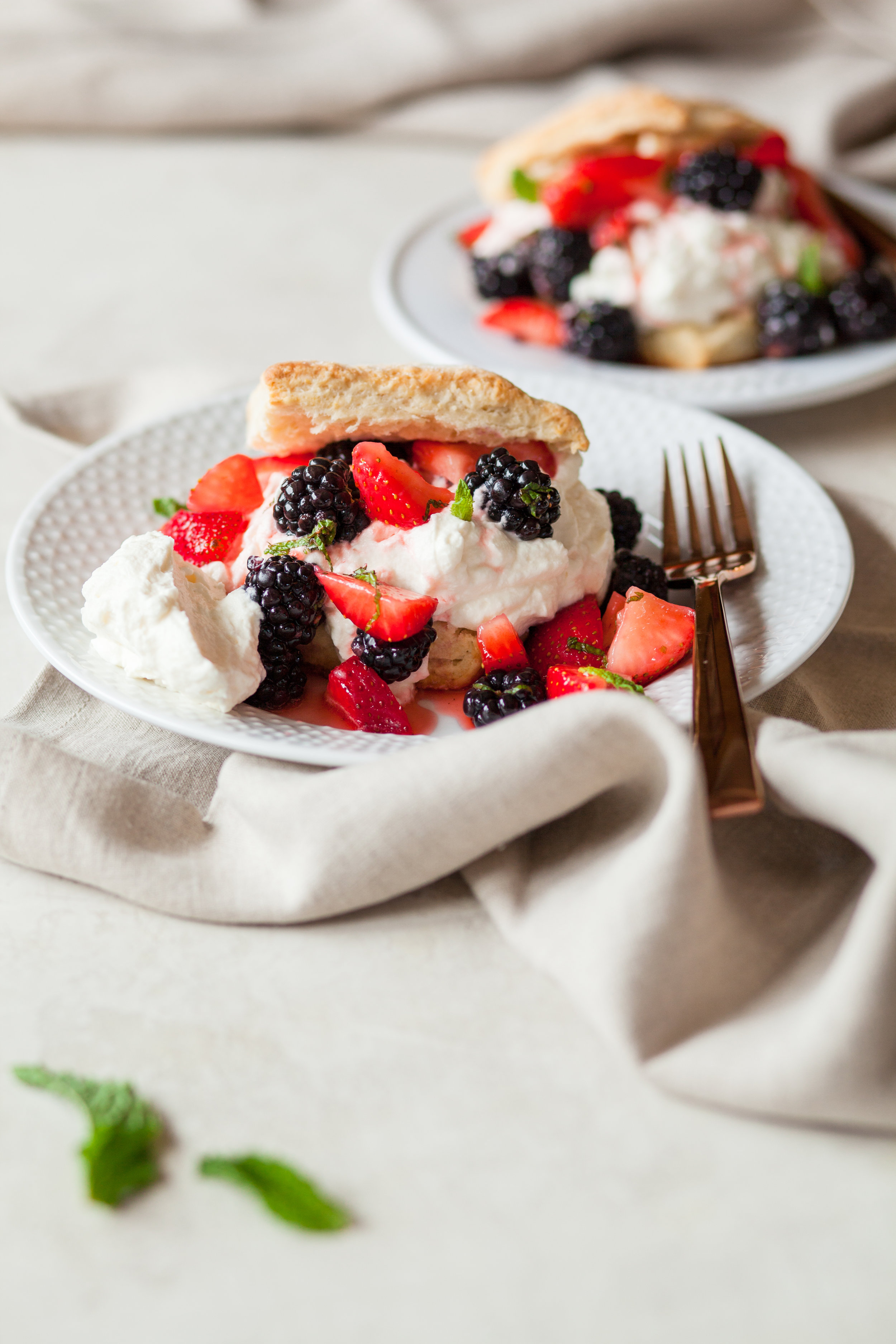 Bon Appetit Shortcakes_QuinnsPlace-12.jpg