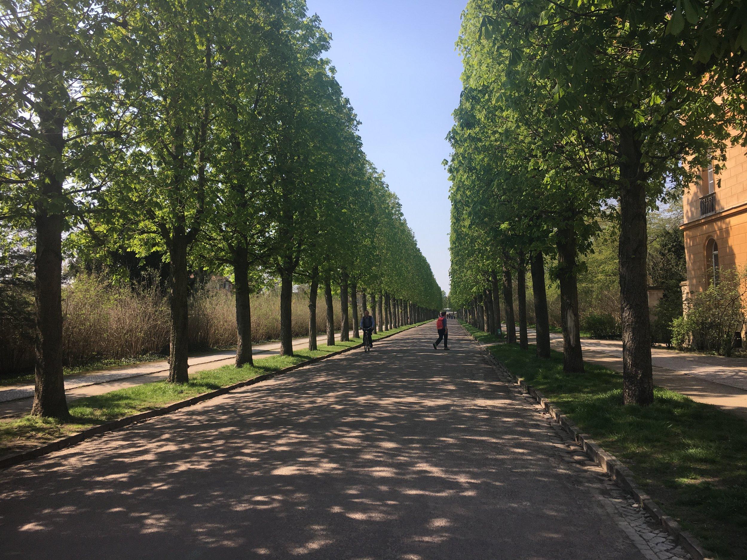 Berlin_Potsdam_Sanssouci-Park-1