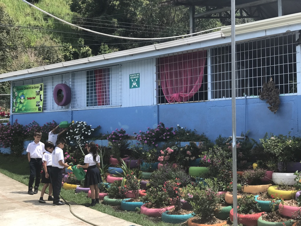 Engage with a local school community. Learn how this award-winning school is using their Carbon Zero Approach to run their school and see how their efforts help the children and the community. -