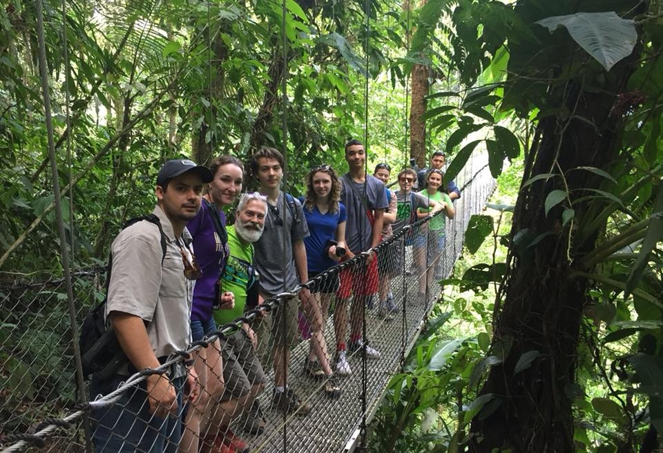 Get ready for a beautiful hike. These hanging bridges are amazing! Great views of the Arenal Volcano, rainforest, birds, mammals, plants, flowers and many other fun things that resides in this magnificent rainforest. -