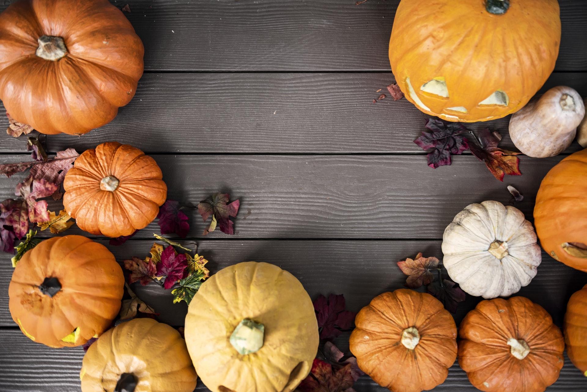 Pumpkin Abundance - Surprising Nutritional Benefits of the Humble Pumpkin