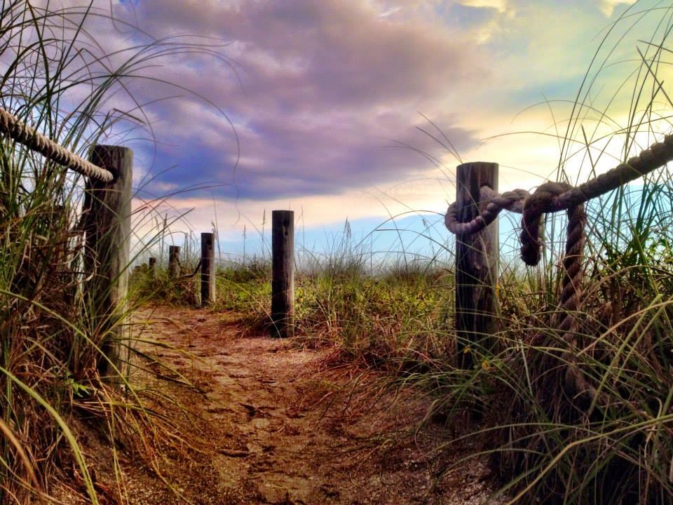 Siesta Key, Turtle Beach, Fla c 2014 StardustBlue Media.jpg