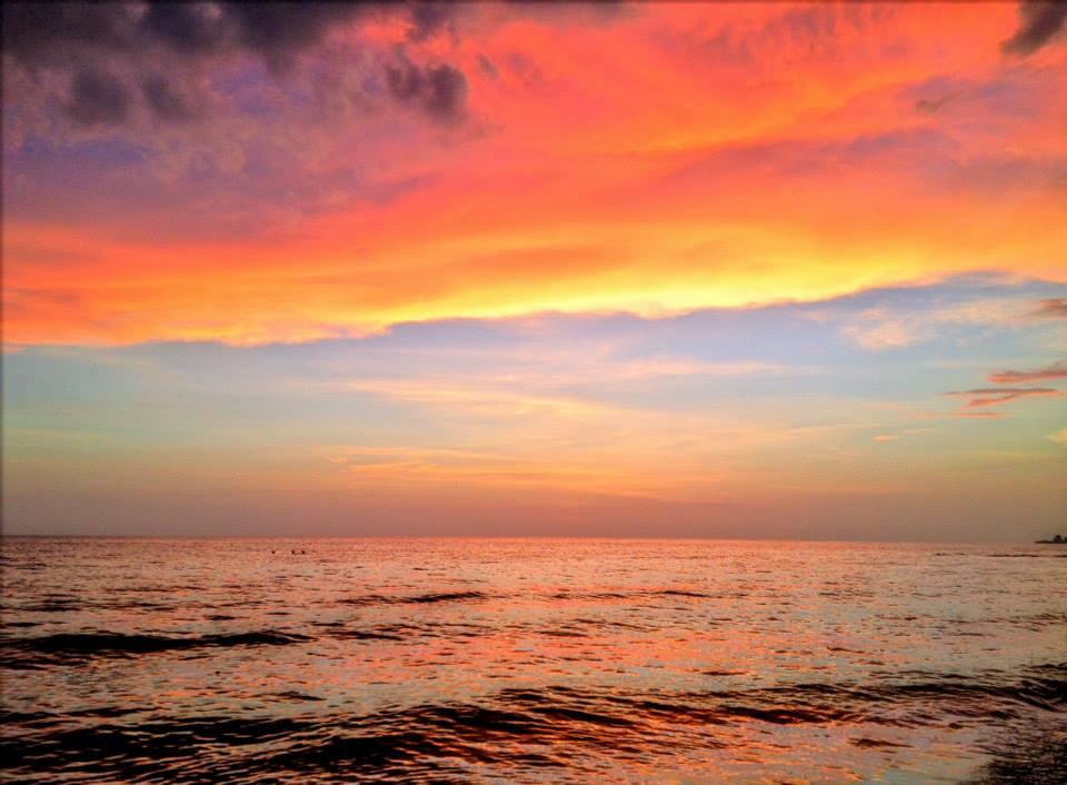 Siesta Key, Turtle Beach, Fla c 2014 StardustBlue Media2.jpg