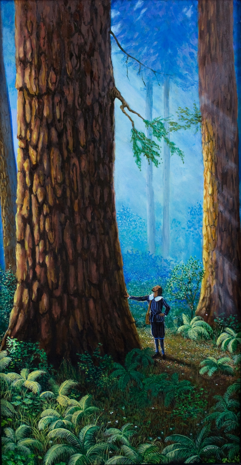 """TheRedwoods""  available as a print."