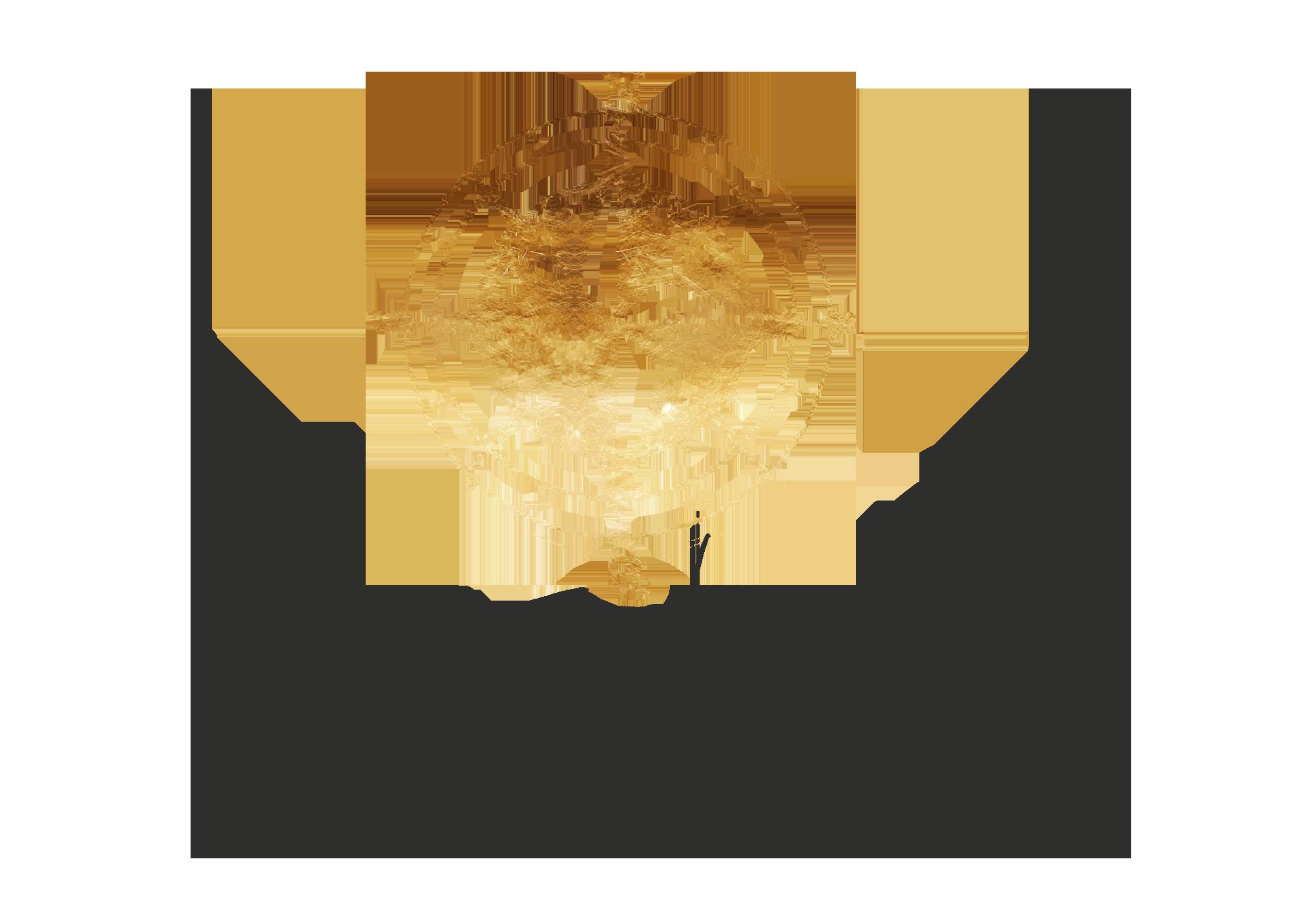 travel-blogger-whensheroams-logo
