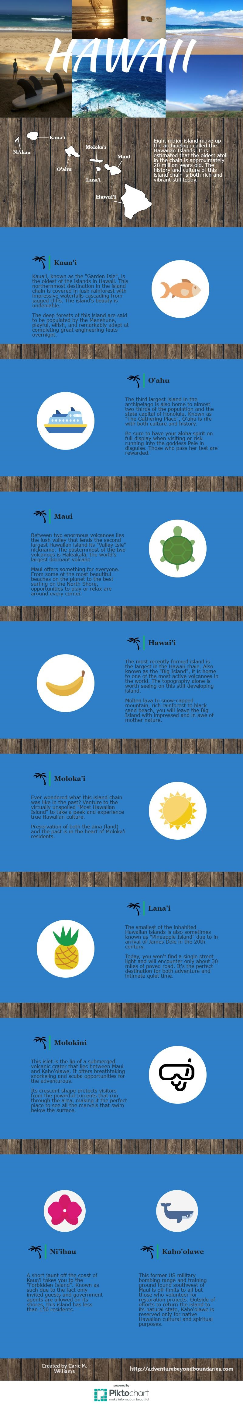 My first infographic