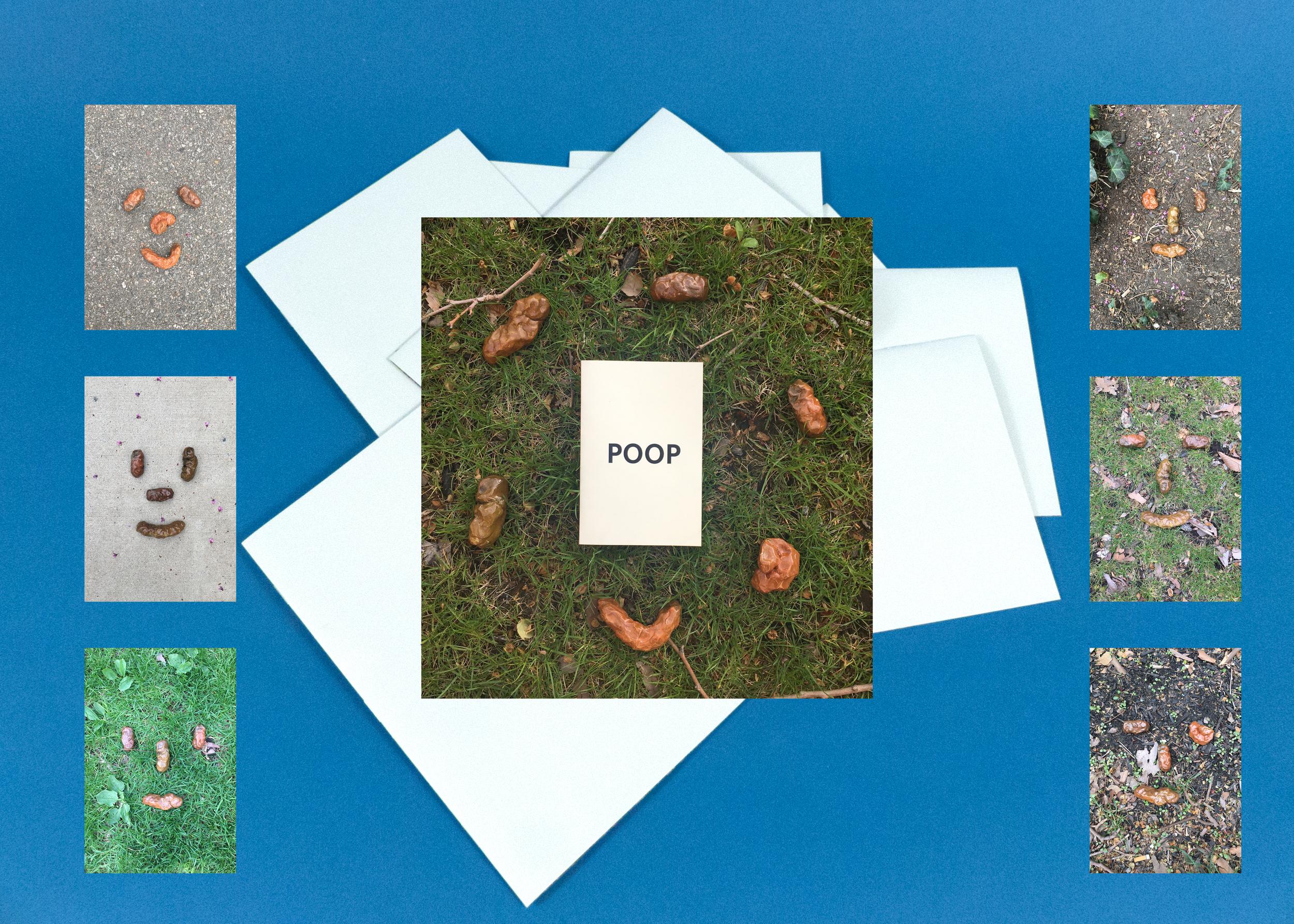 PoopZine_website.jpg