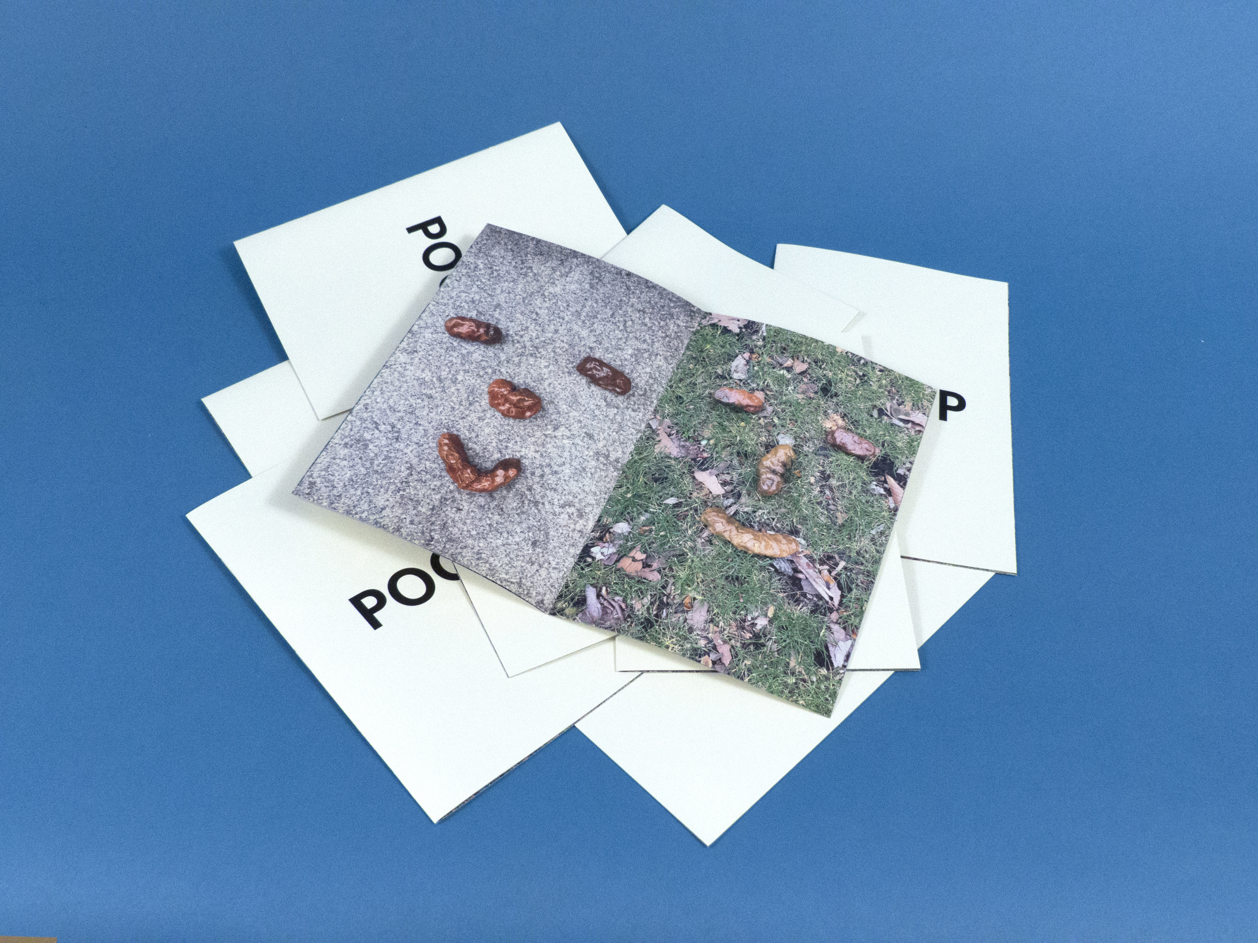 PoopZine_Photo_05.jpg