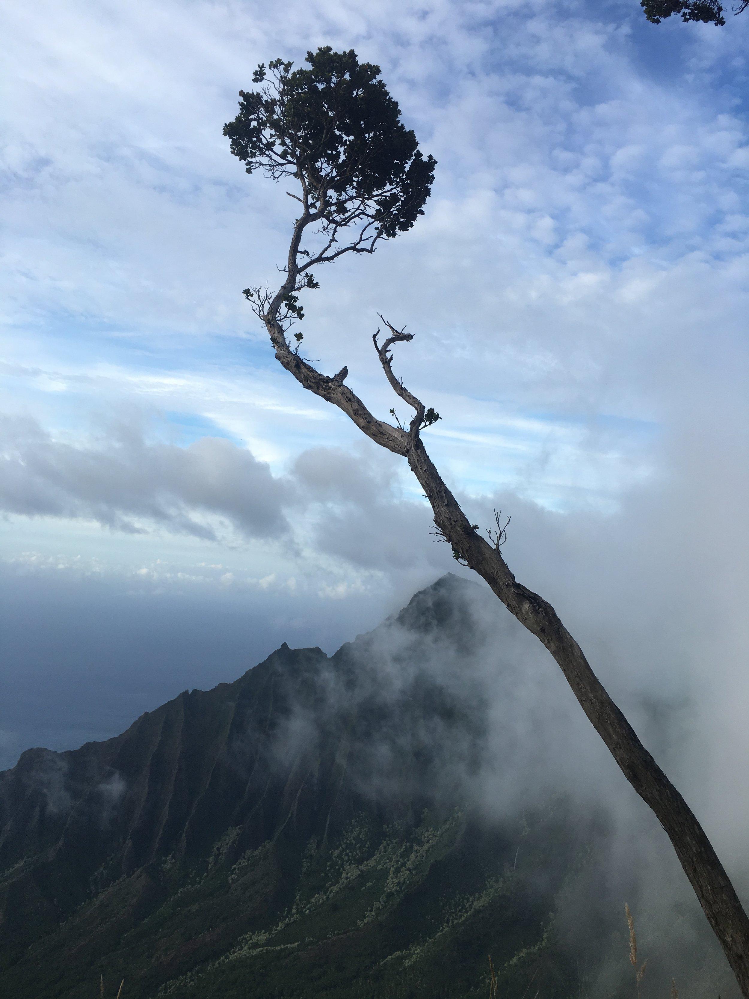 Magical Na Pali Coast Kauiai Shamanism Retreat.JPG