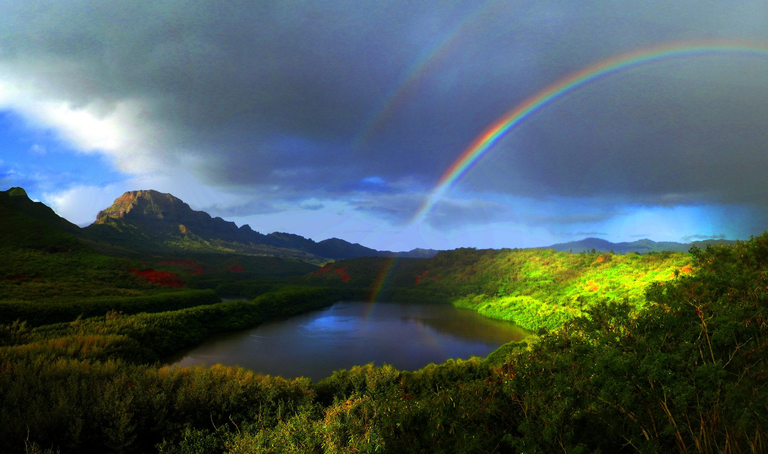 Reiki Hawaii Energy Healing Workshop.jpg