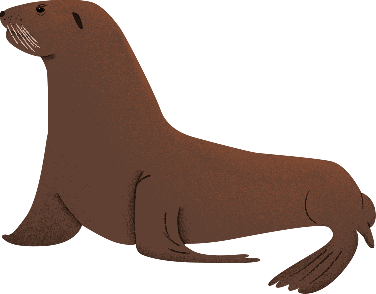 Sea-Lion.png