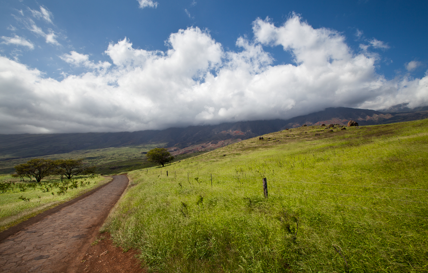country-image-pueo-creations-professional-photogrpahy-maui.jpg