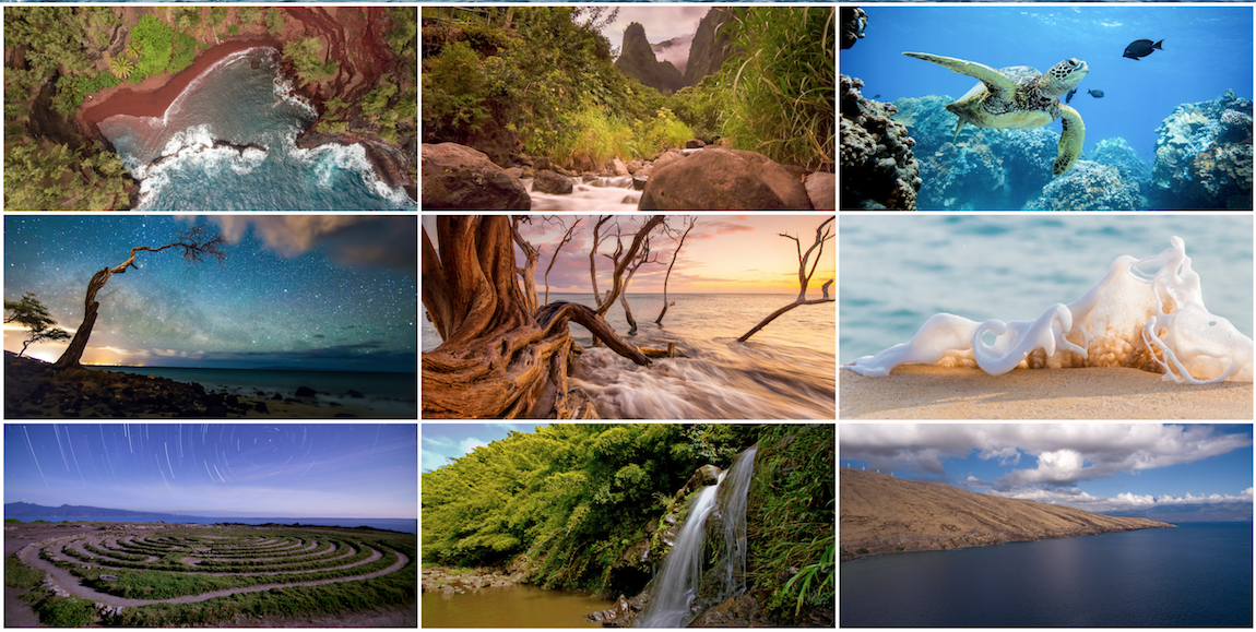 screen-shot-epic-experience-maui-website.png