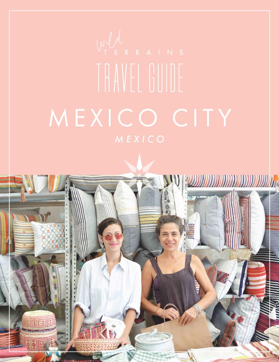 Mexico-City-Travel-Guide-01.jpeg