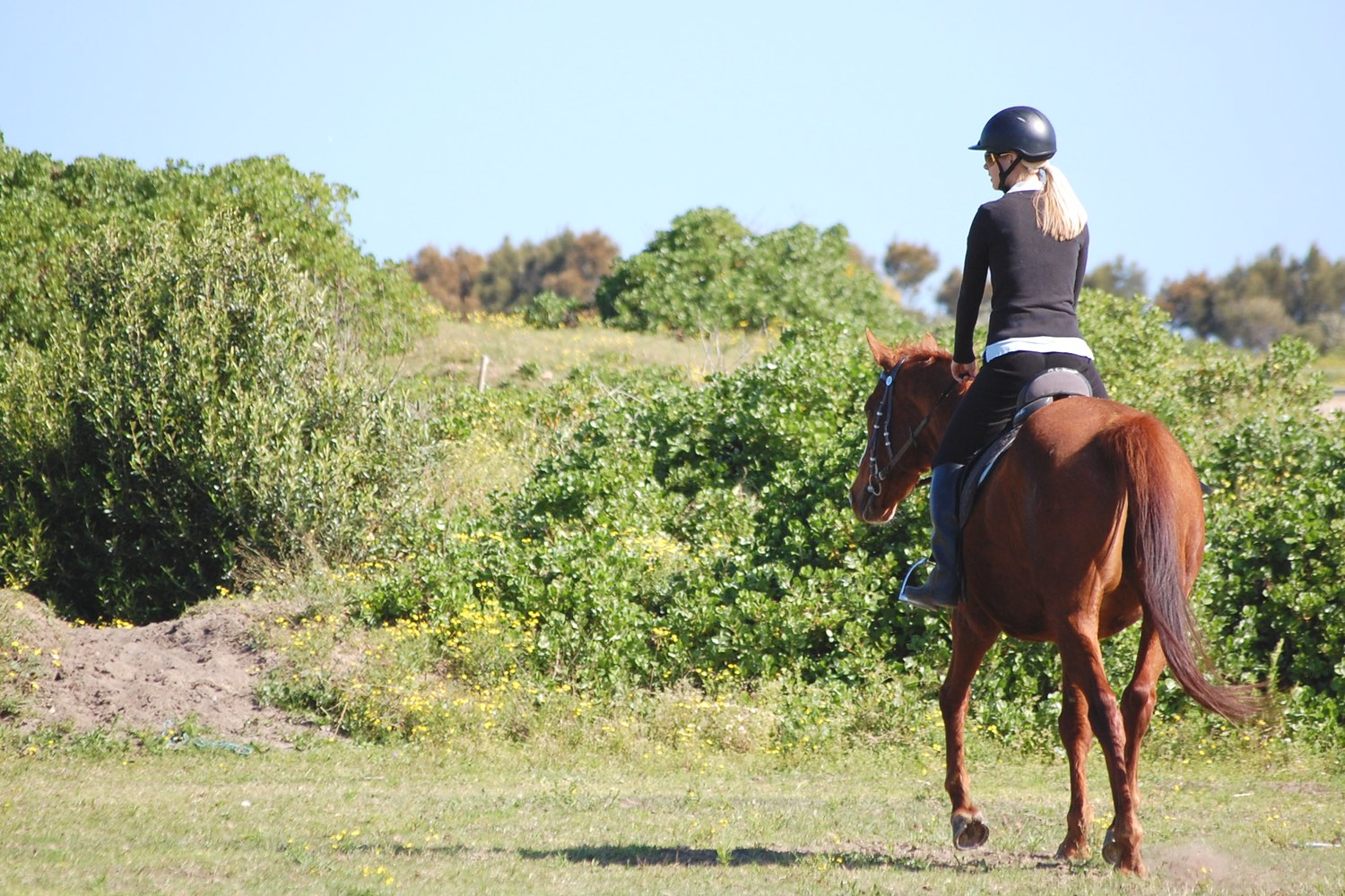 How a Ride on a Horse is Great for My Spirit and Soul…