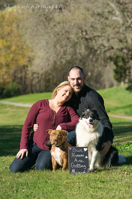 Luxchromatic_Engagement_Wedding_Photography_San_Francisco_Bay_Area_Dogs_Rachel_Chris-1004 copy.jpg