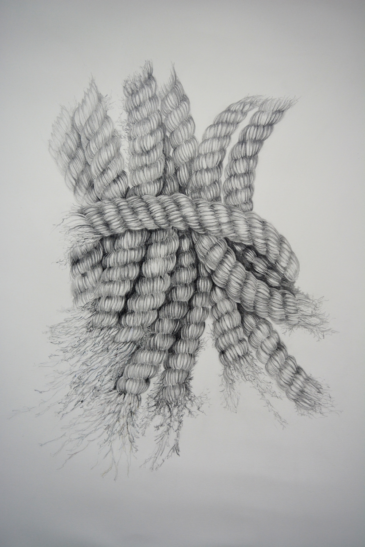 SEA ROPE   - Pencil on Fabriano Paper - 2017 - 60cm x 80cm