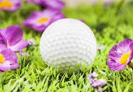 Spring League Flowers.jpg