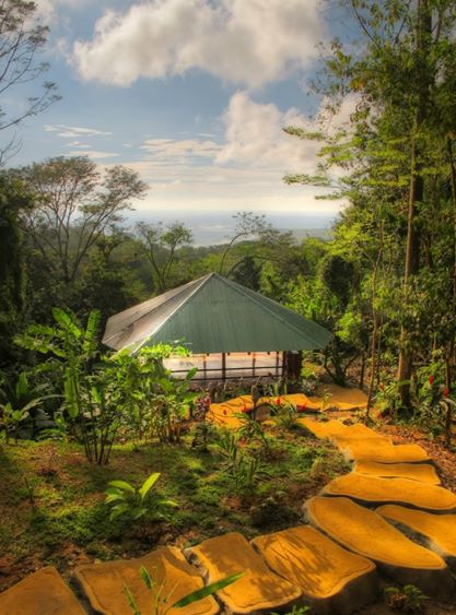 retreat_selva-armonia_yoga-january_2016-yoga_ocean_view.jpg