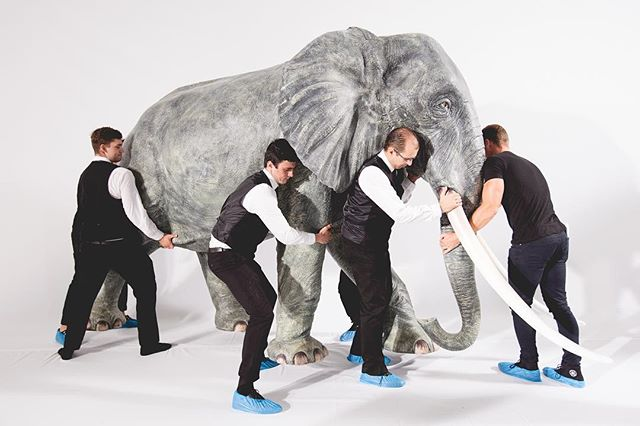 Not the sort of thing you see everyday. Life-size, Tarzan-inspired elephants at Nicholas Oakwell Couture AW16. See more photo highlights from the show at suziejay.com  #eventprofs #events #eventphotography #IGLondon #London #claridges #nicholasoakwell #fashion #fashionshow #elephant