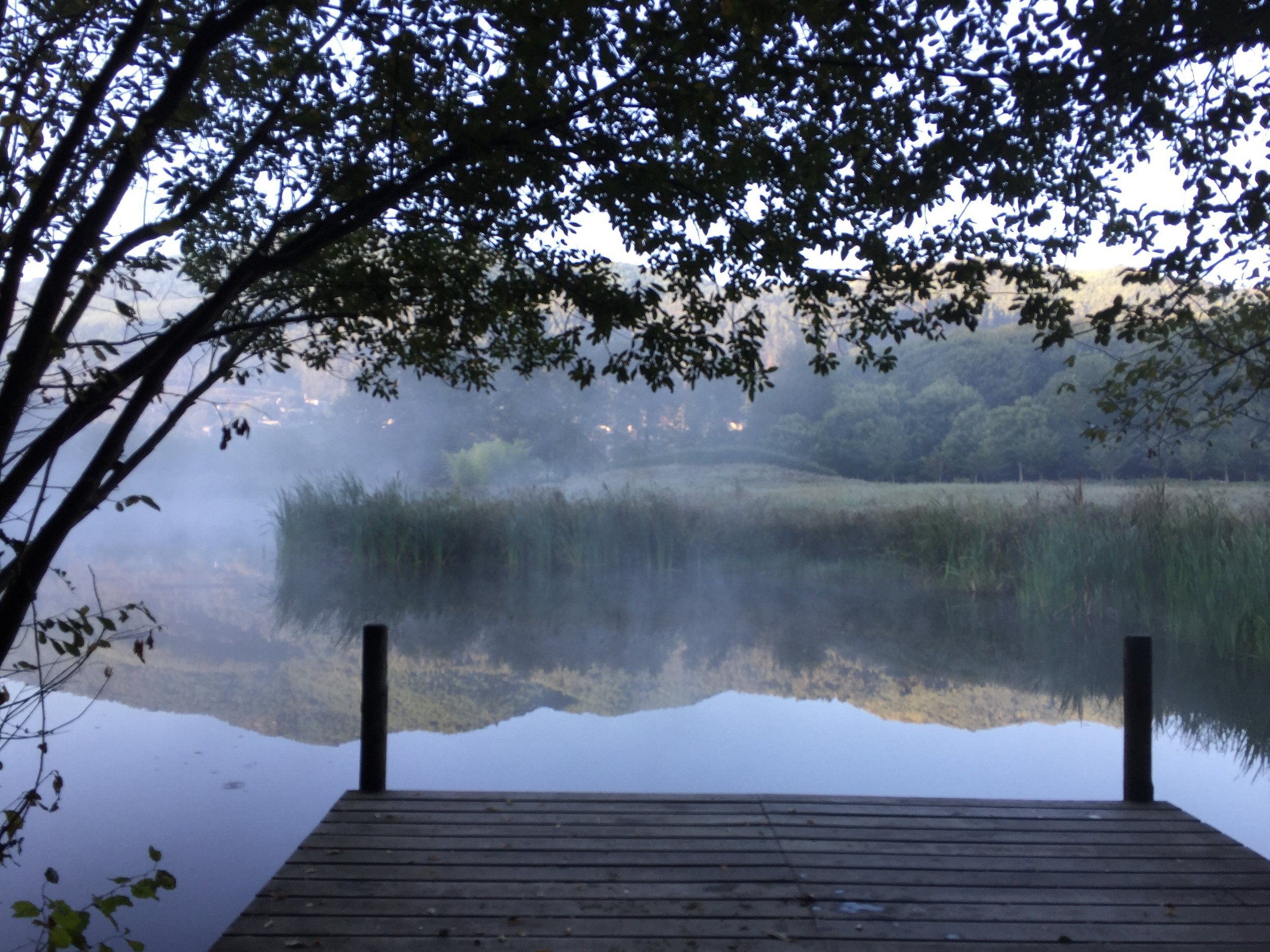lake morning mist.jpg
