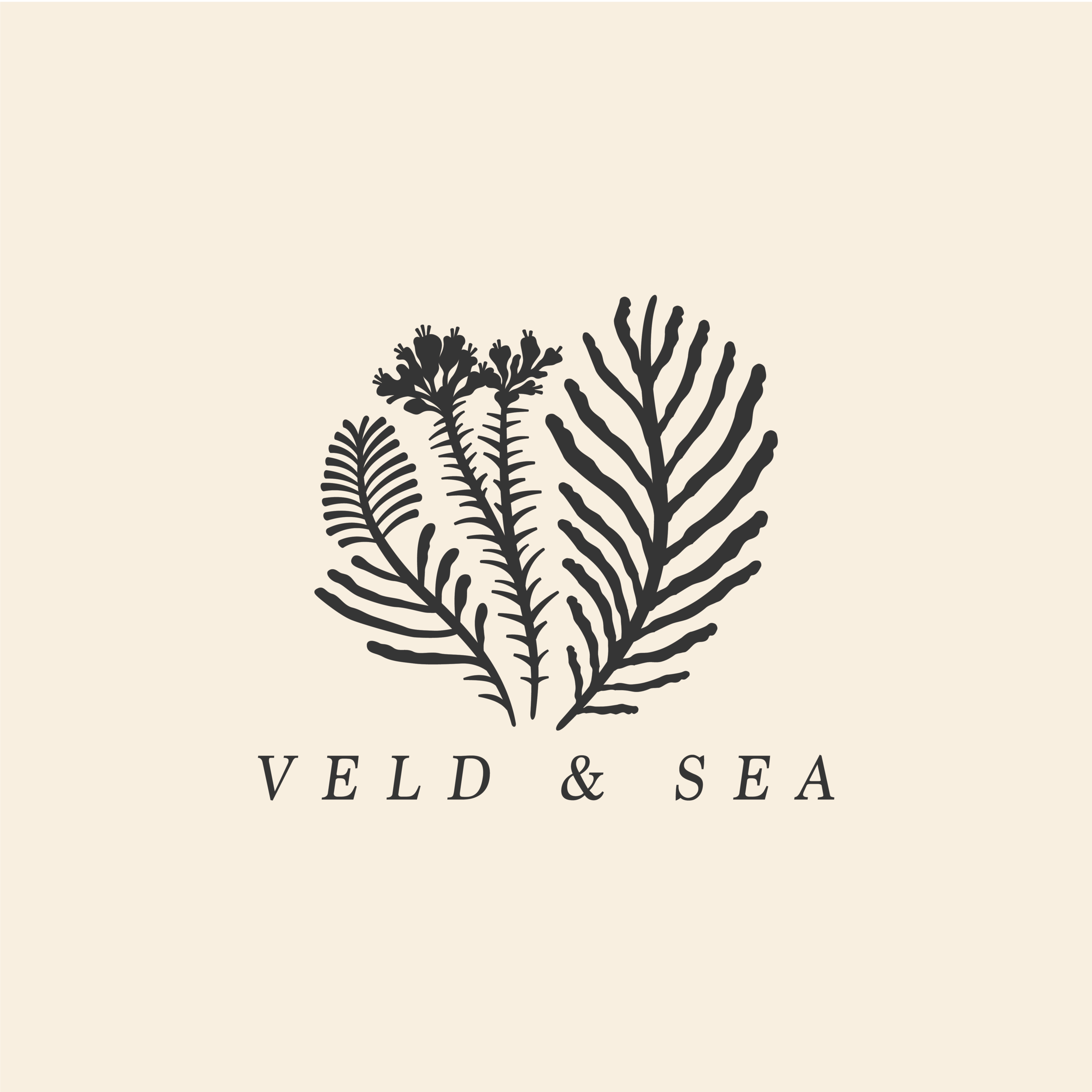 VELD AND SEA_SOCIAL MEDIA_INSTAGRAM IMAGE SIZE.png
