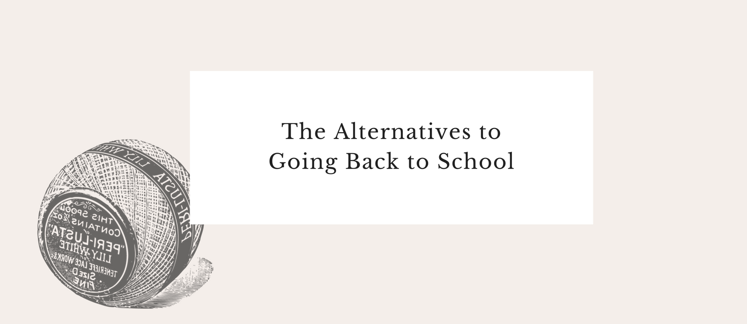 The Alternatives to Going Back to School.png