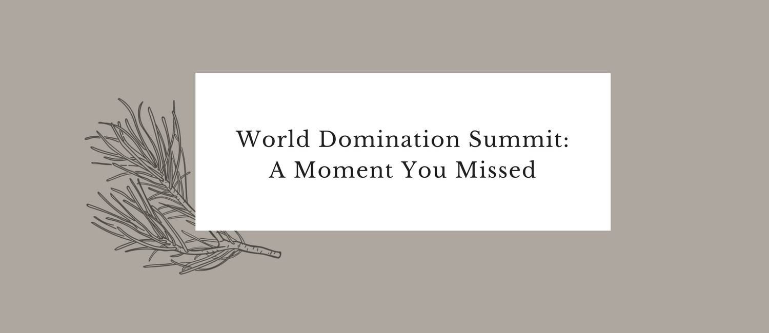 World Domination Summit- A Moment You Missed.png