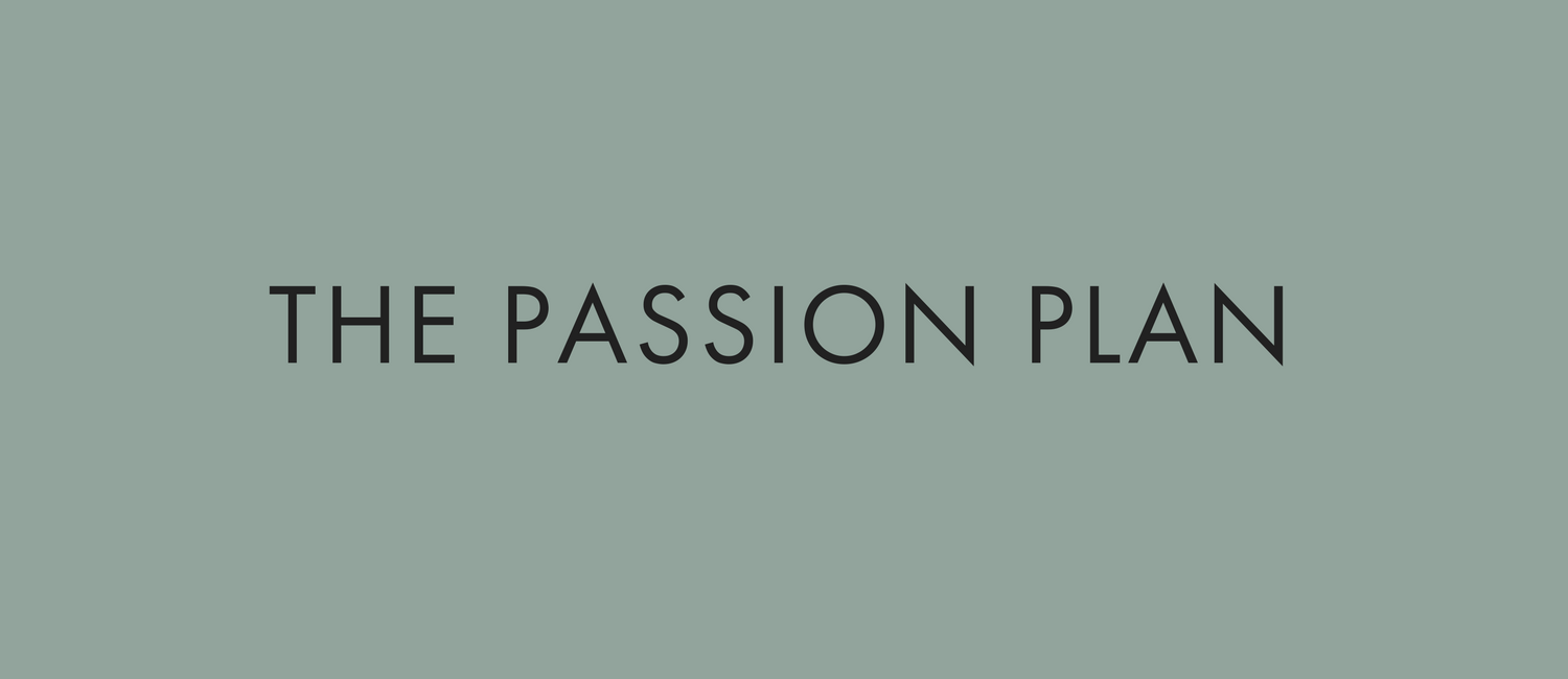 THE PASSION PLAN.png