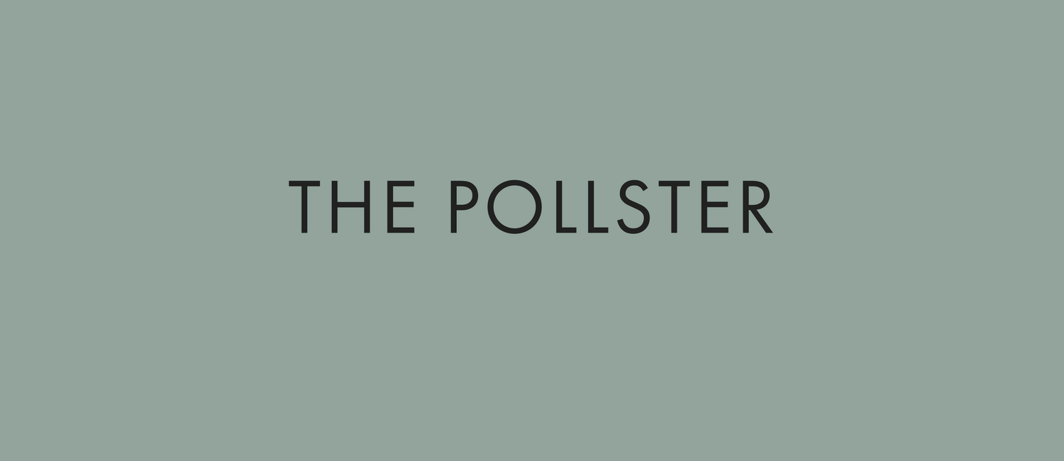 THE POLLSTER.png
