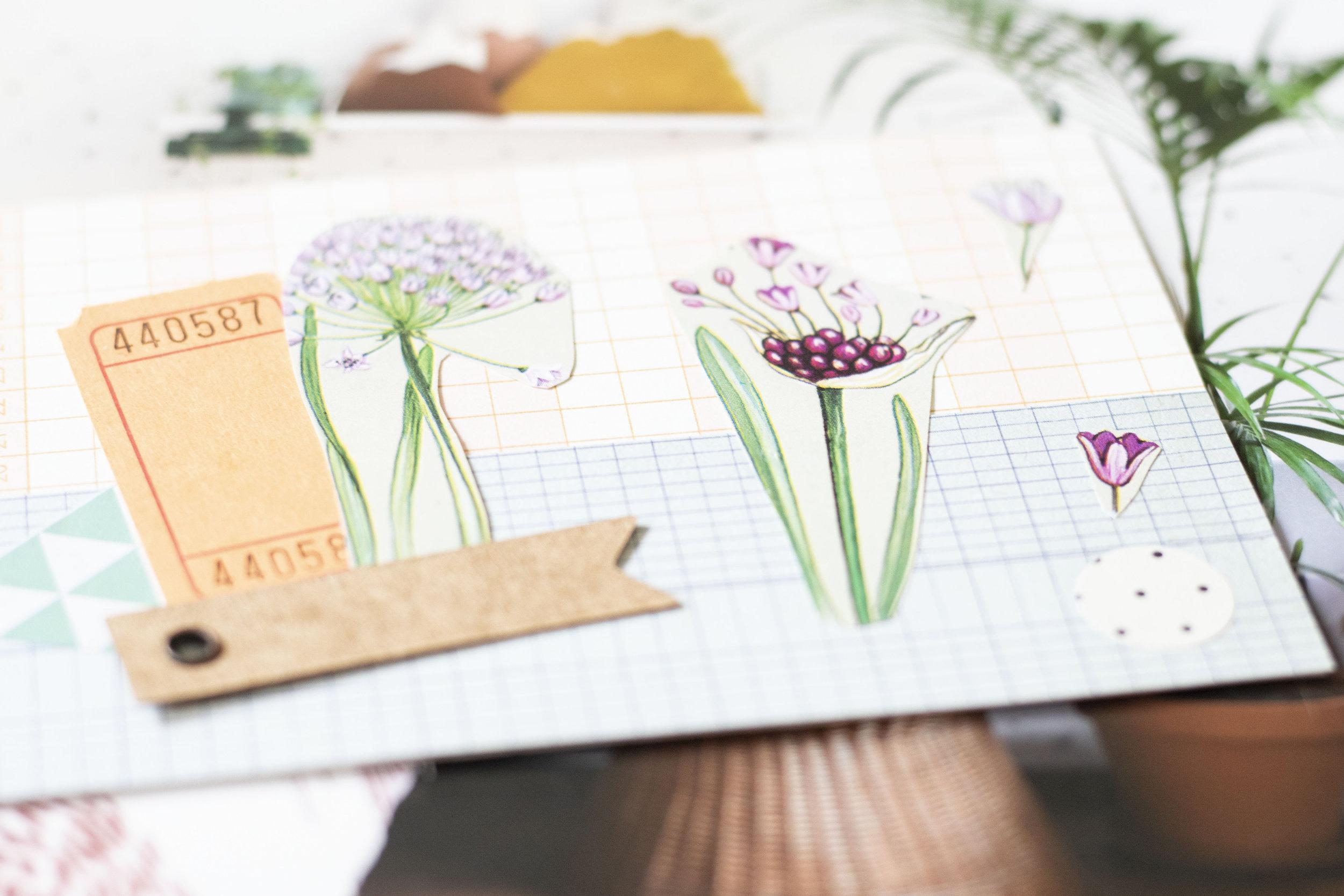 Collage Postcards.jpg