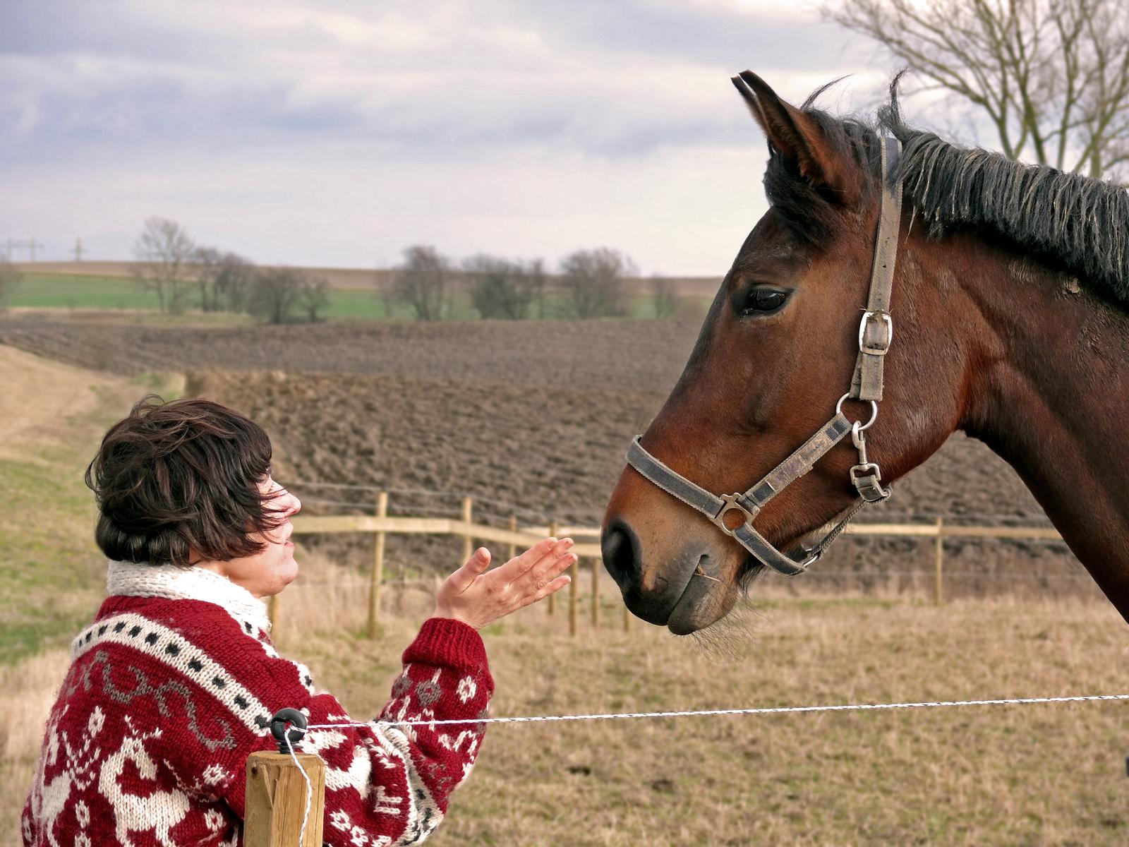 EALC Talking to Horse.jpg