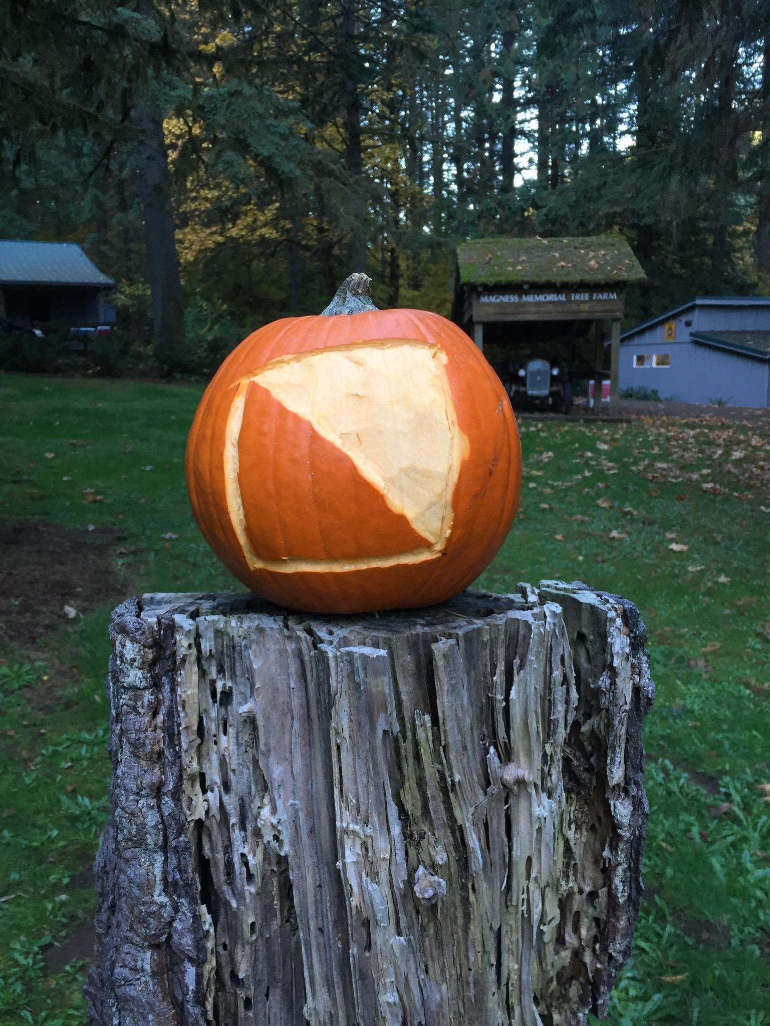The CROC pumpkin