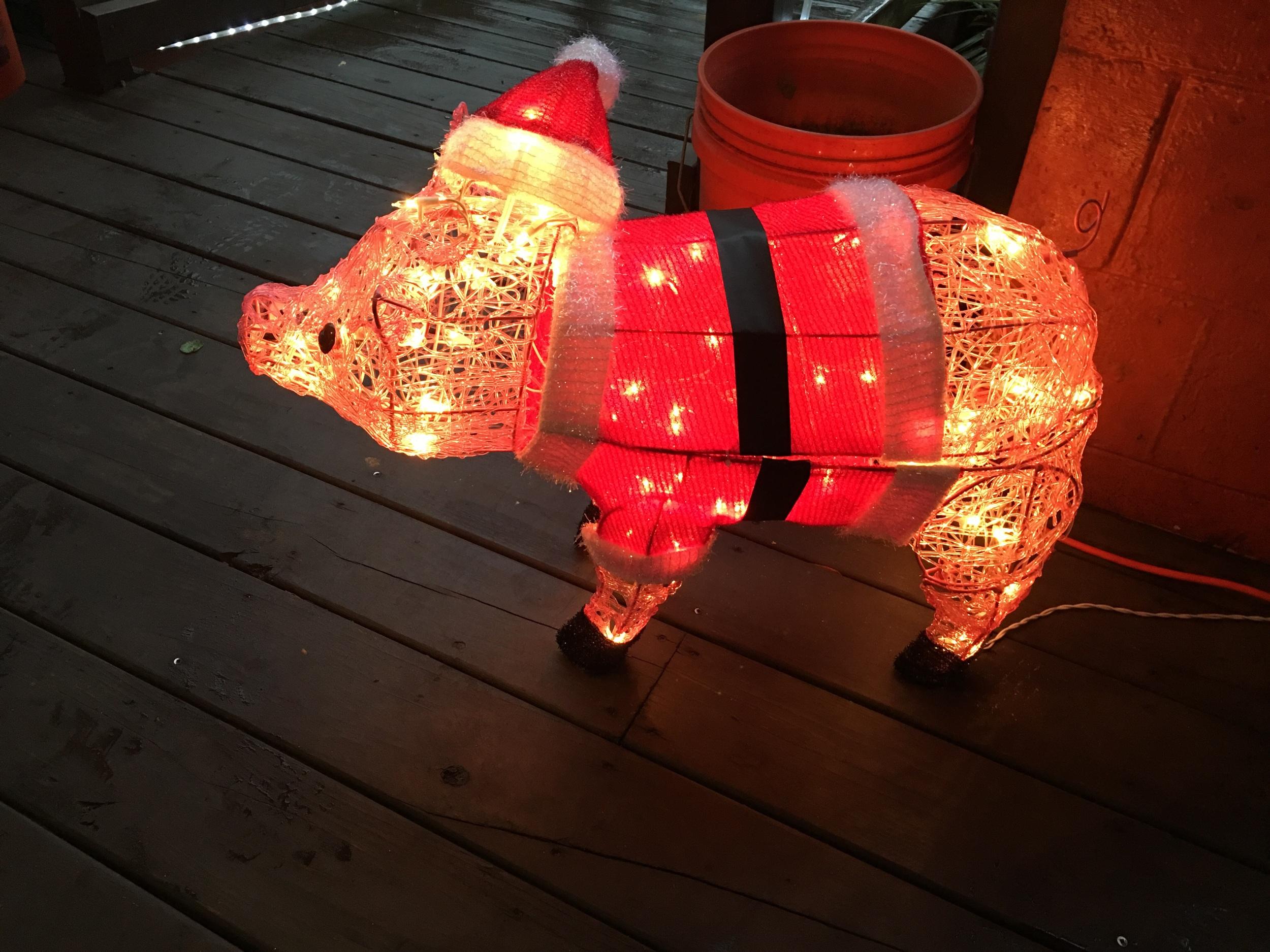 Holiday Hog