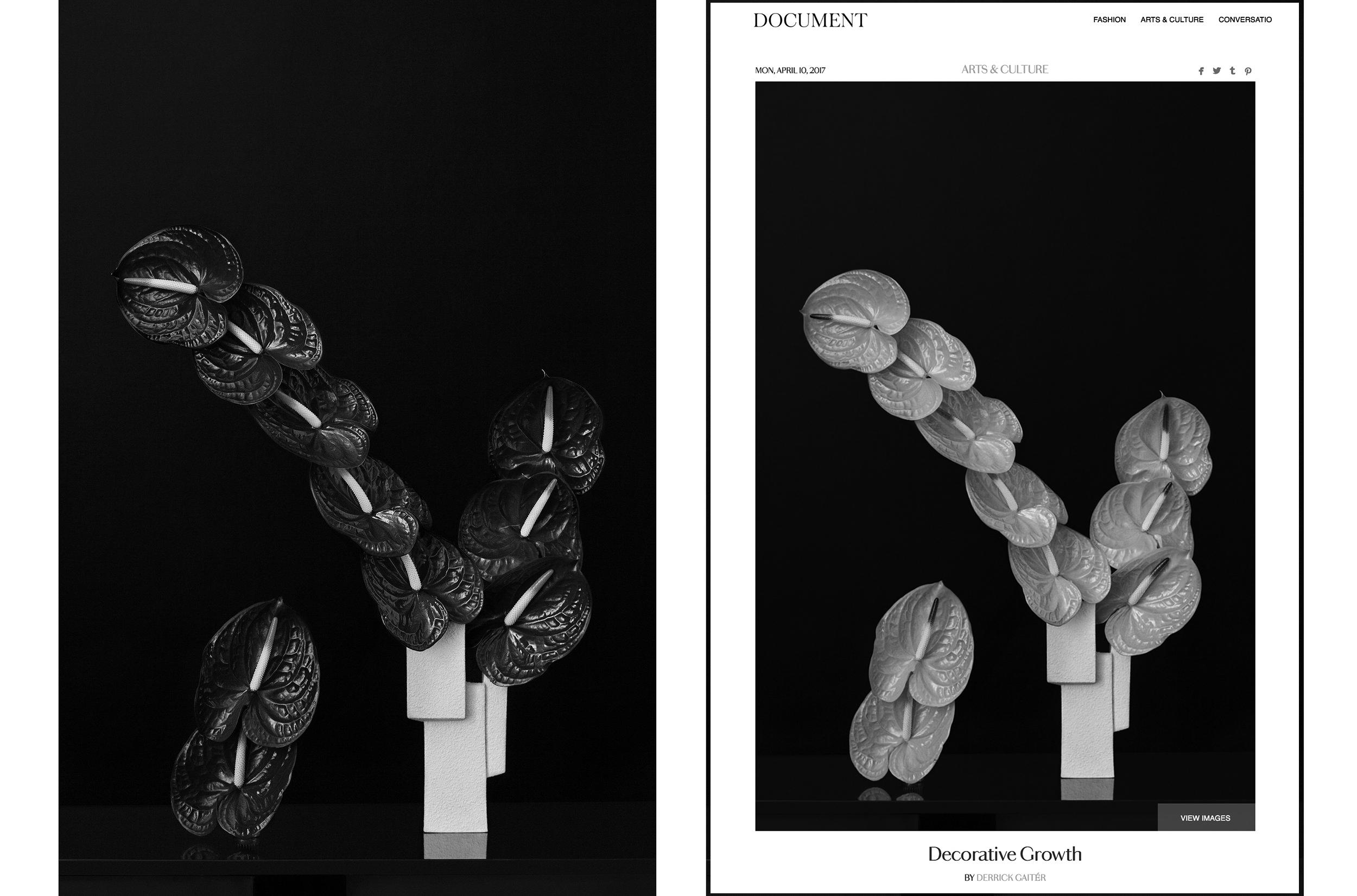 metaflora-ellinor-stigle-document-journal-marisa-competello