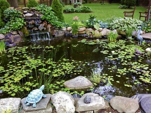 Pond design, implementation, and construction.