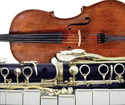 Stadler instruments picture.jpg
