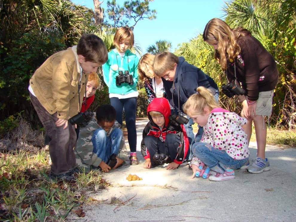 Identifying scat found on the trails at Boyd Hill Nature Preserve (St. Petersburg, Florida; photograph by GLH)