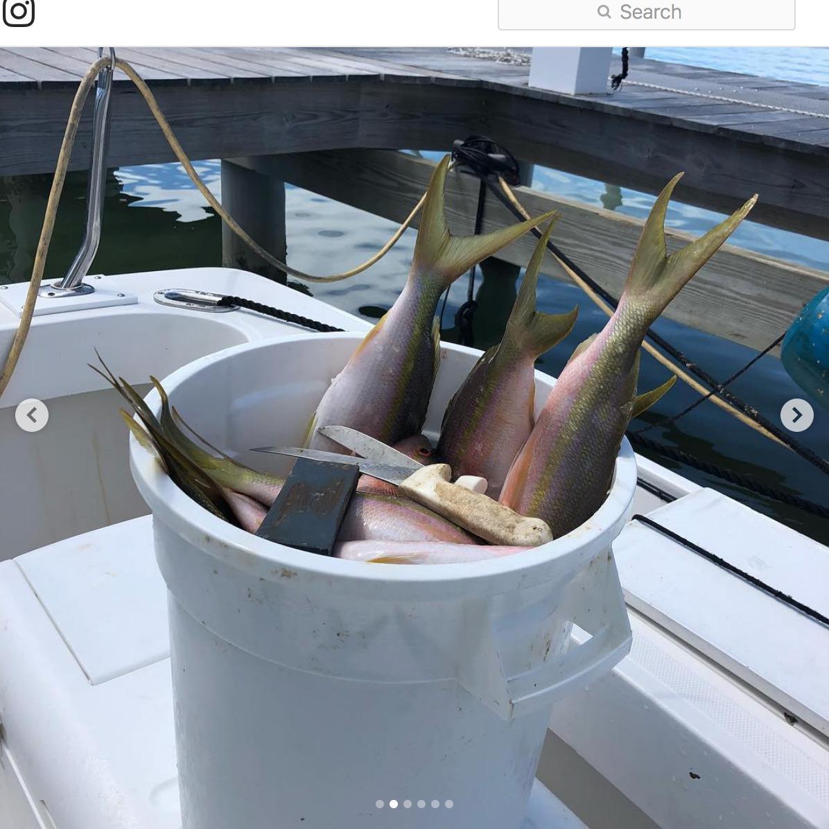 "Screenshot_2018-09-30 CANA Sportfishing Charters on Instagram ""Great fishing last week in #islamorada with calm seas and hu[...](1).jpg"