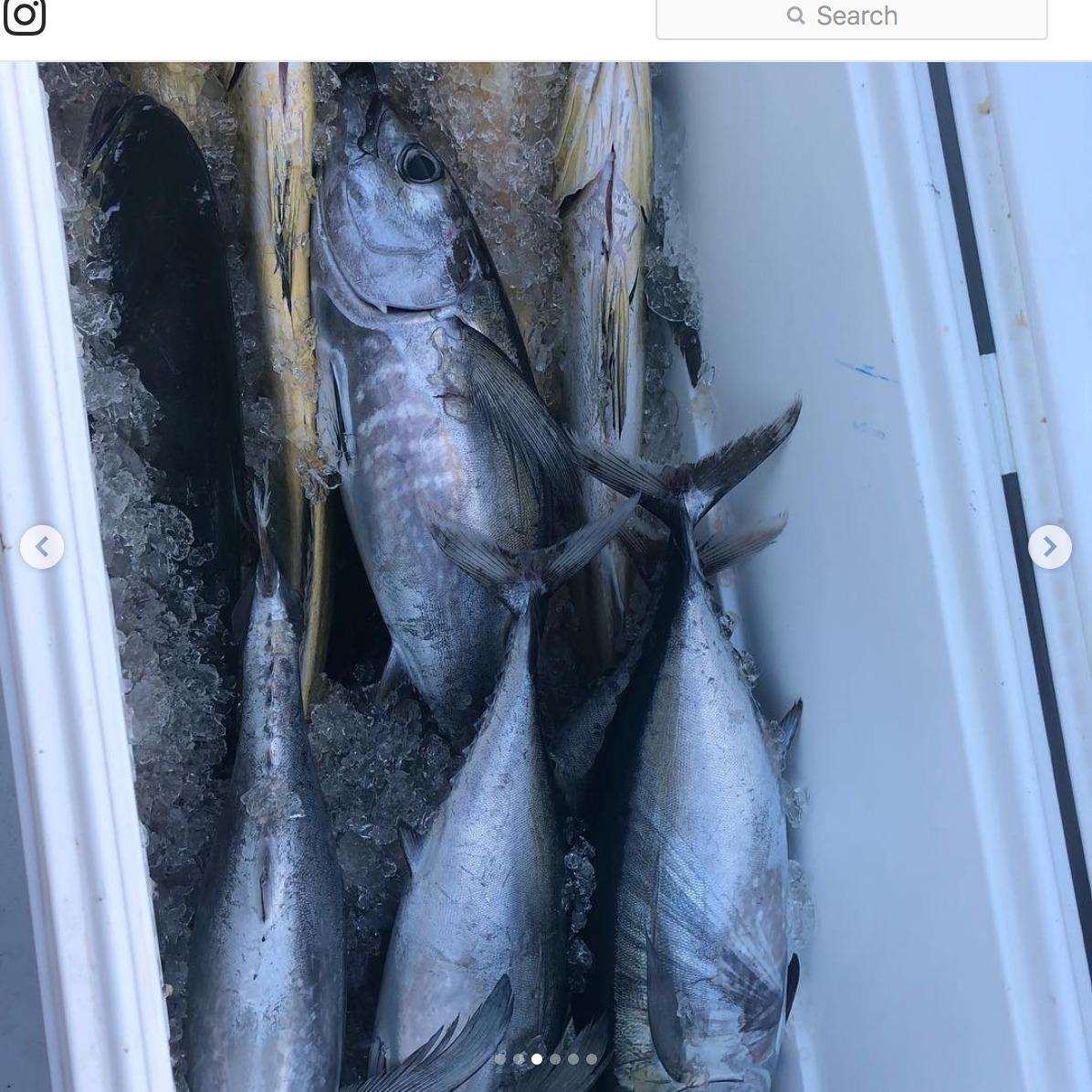 "Screenshot_2018-09-30 CANA Sportfishing Charters on Instagram ""Great fishing last week in #islamorada with calm seas and hu[...](2).jpg"
