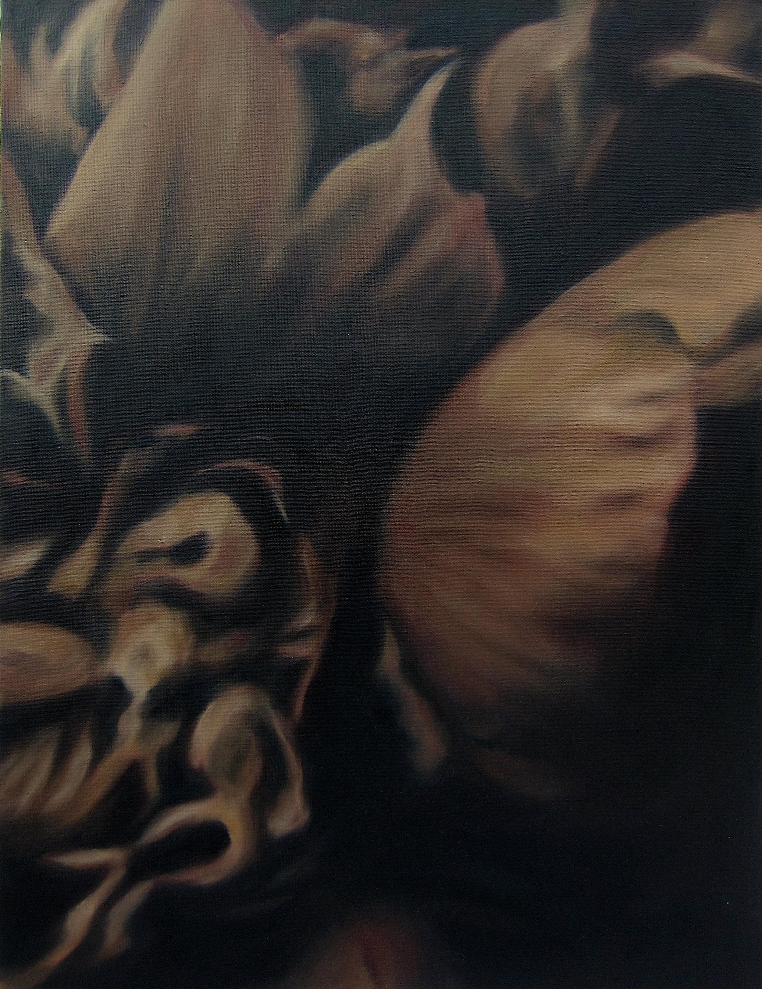 Language des fleurs et des choses muettes No.2,  2016  oil on linen,36 x 36 in, 91 x 91 cm